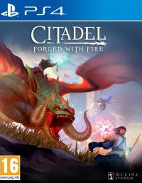 Citadel: Forget With Fire (PS4)